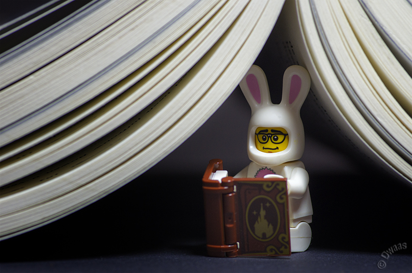 lego steven bookbunny bookworm book reading