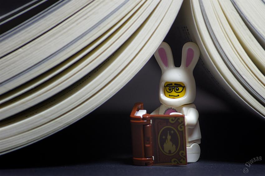 lego steven bookbunny bookworm book reading