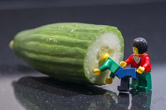 Jake and the cucumber
