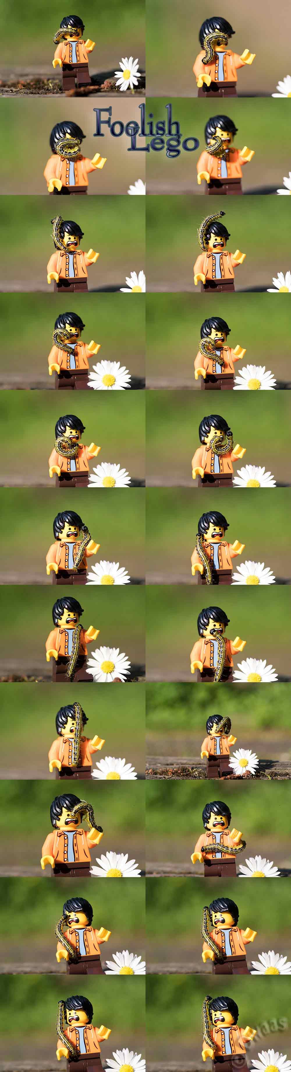 set of photos showing man with caterpillar on him