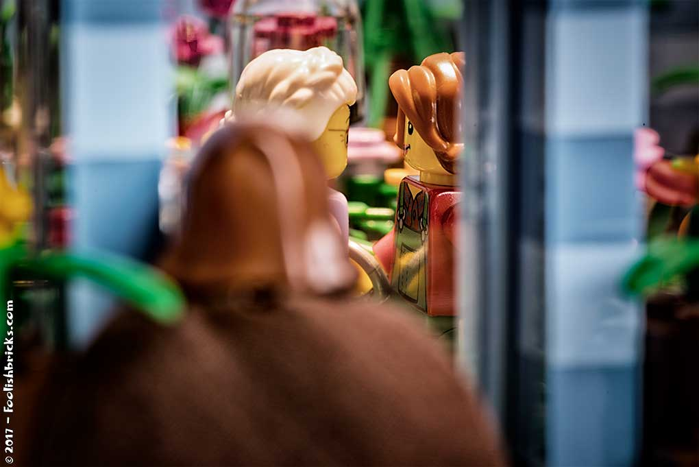 lego Dwaas peeping through window into floweshop