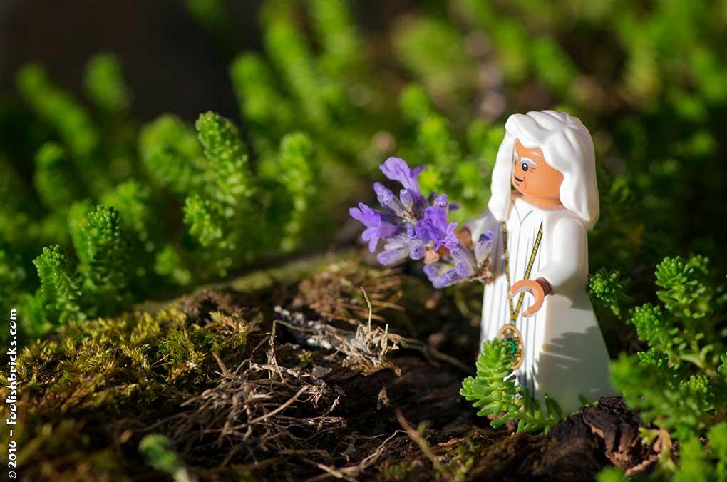 Lego serenity zen nature
