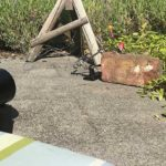 Behind-scenes-lego-photography-header-18017