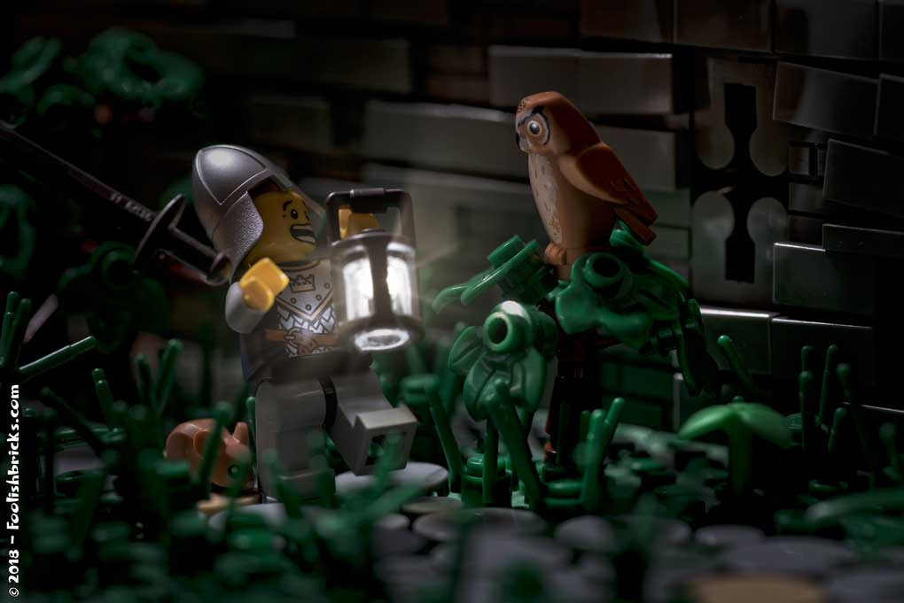 lego photography - medieval guard scared by owl patrol